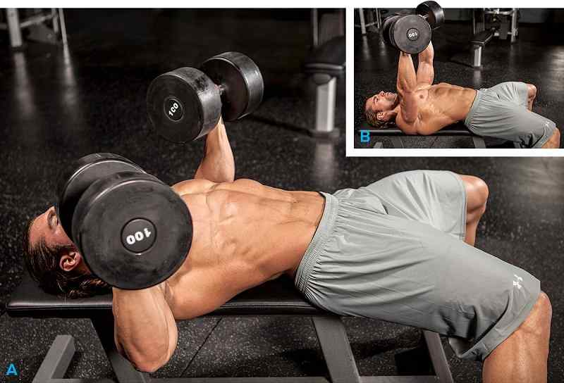 Effective Workouts for Building Muscle