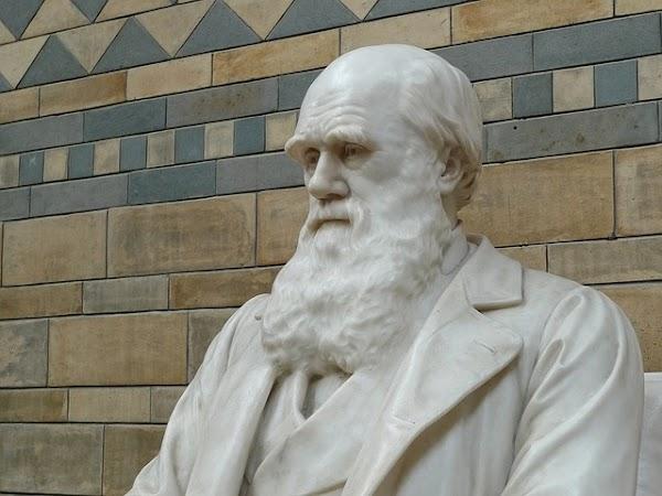 Charles Darwin: Biografía, legado y libros digitalizados