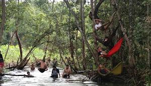 Ke Istimewaan Sungai Nibung Yang Mendadak Viral Di kelurahan Sindur Kota Prabumulih