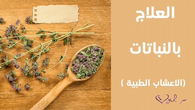 العلاج بالنباتات (الأعشاب الطبية)