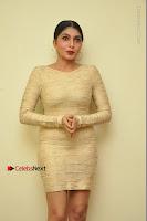 Actress Pooja Roshan Stills in Golden Short Dress at Box Movie Audio Launch  0139.JPG