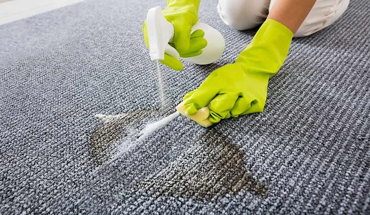 Canton MA Rug Cleaning