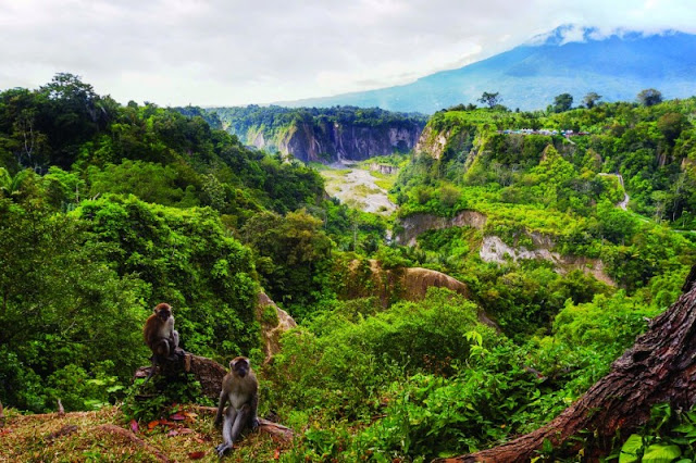 Wisata Ngarai Sianok