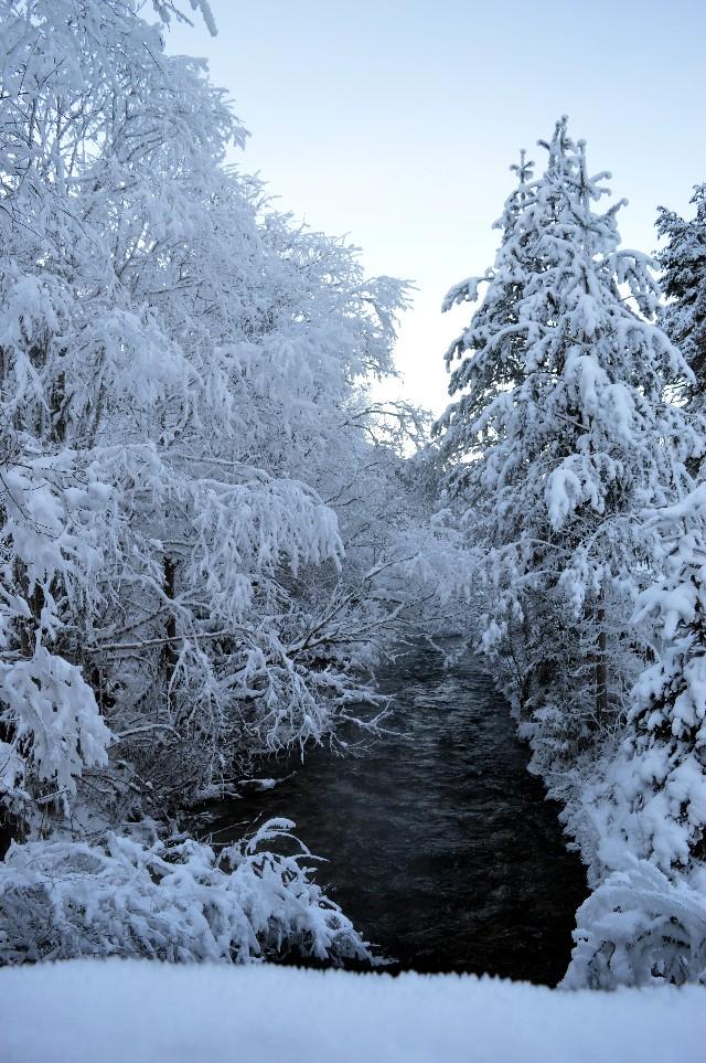 escursioni invernali ciaspole plan de corones