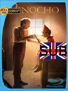 Pinocho (Pinocchio) (2019) HD [1080p] Subtitulado [GoogleDrive] SilvestreHD