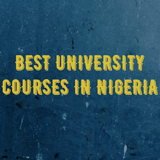 best courses in the universities, Best courses in the University