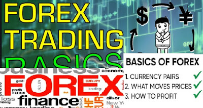 Spot contracts in forex
