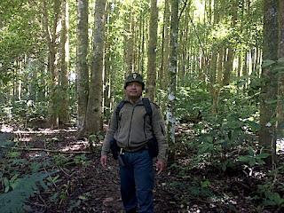 Hari Hutan Internasional