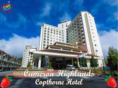 Cameron Highlands 4 Stars hotels