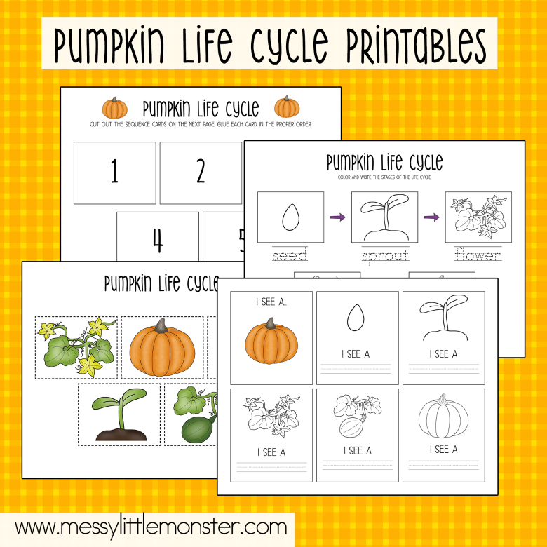 pumpkin life cycle activity pack