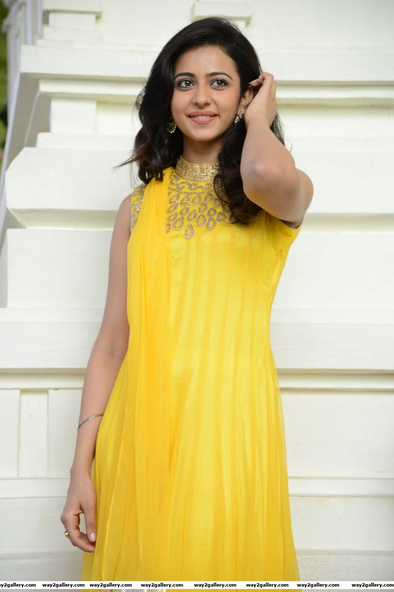 rakul preet singh photo gallery and rakul preet singh spicy gallery 12