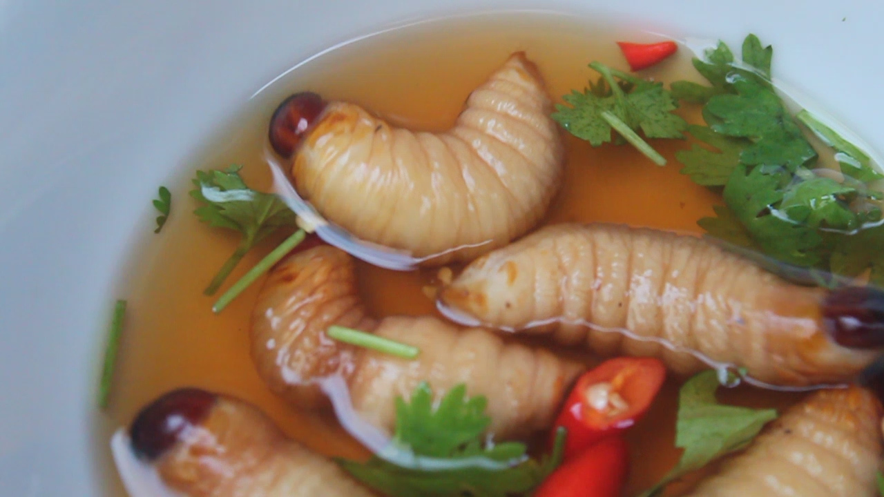 Vietnam food food weird vietnamese food dare you try it traditional forumfinder Image collections