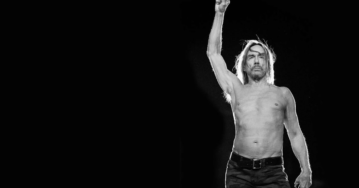 Torrent discography the iggy and pop stooges The History