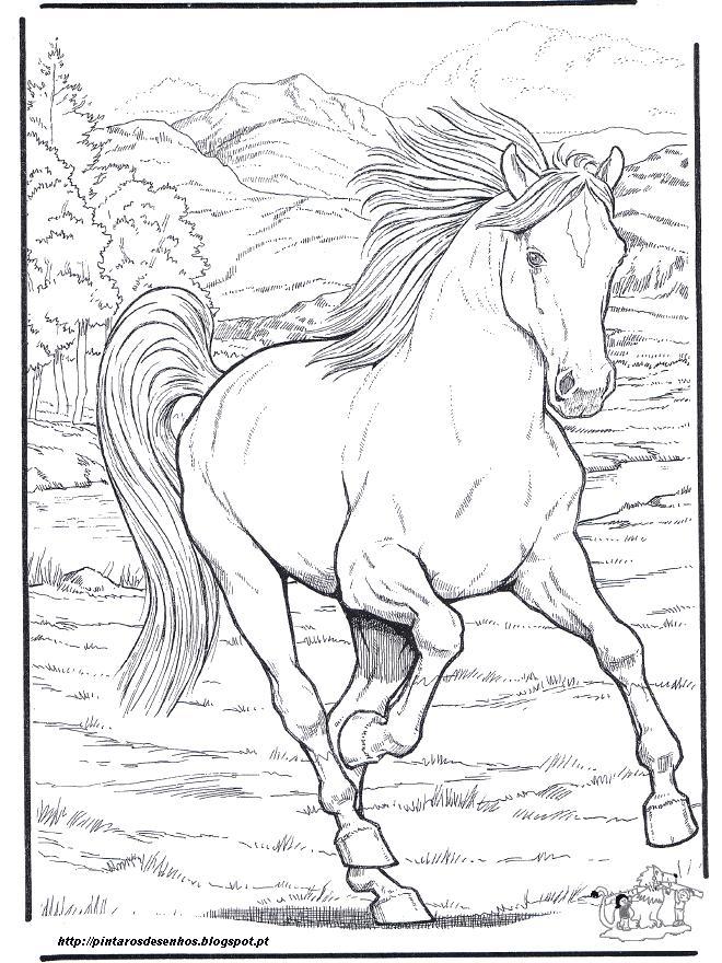 desenhos para colorir desenhar e pintar desenhos de cavalos para
