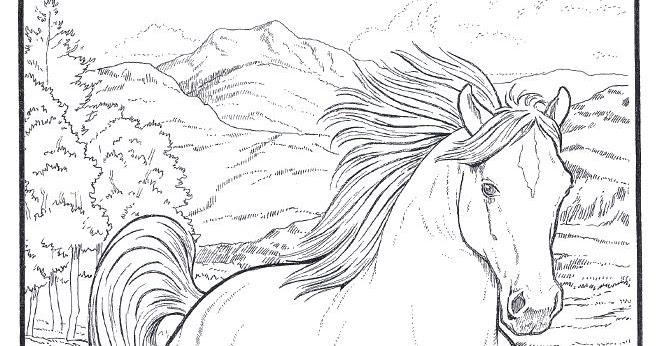 Desenhos Para Colorir Desenhar E Pintar Desenhos De Cavalos