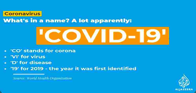 In which year did COVID-19 first appear?