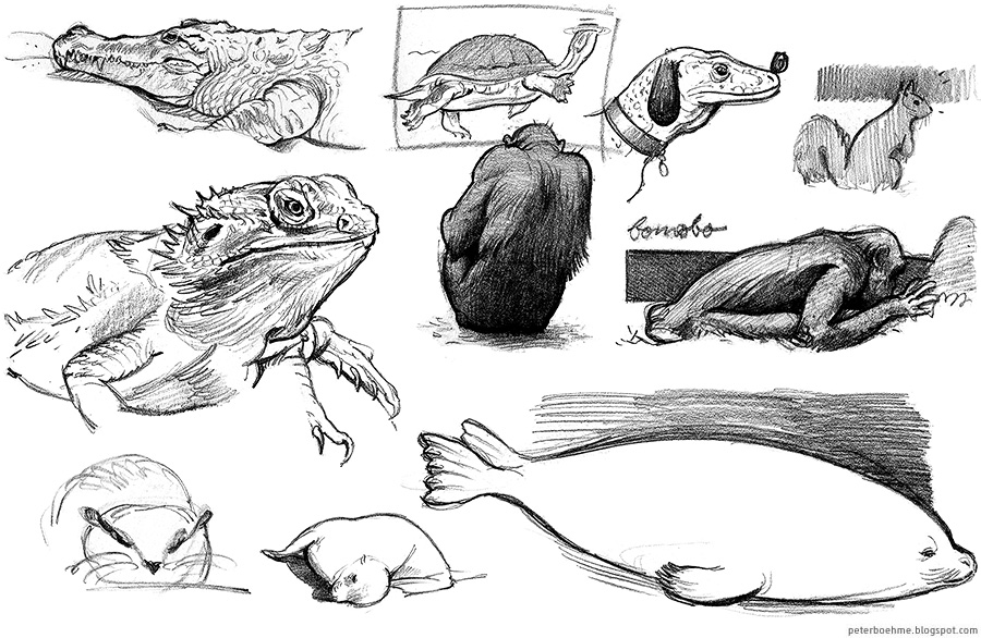 Peter Boehme · Sketches + works in progress: Animals, May