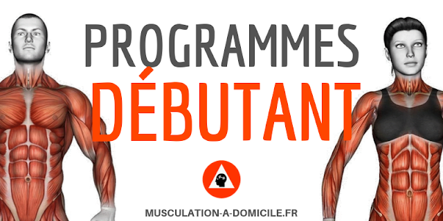 musculation-a-domicile_programme_musculation-debutant-full-body-poids-du-corps-haltere