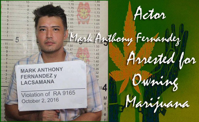 Actor Mark Anthony Fernandez Arrested for Owning Marijuana