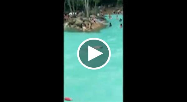 Video: Netizen Kecam Pengunjung Hanya Tengok Kanak-Kanak Lemas Dalam Kolam