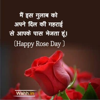 Happy Rose Day Whatsapp Quotes In Hindi