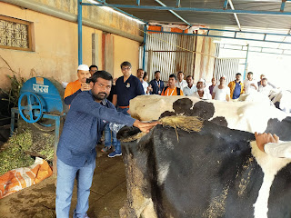 Fullerton India treated over 68,000 cattle in its 4th edition of Pashu Vikas Day - country's largest cattle care programme