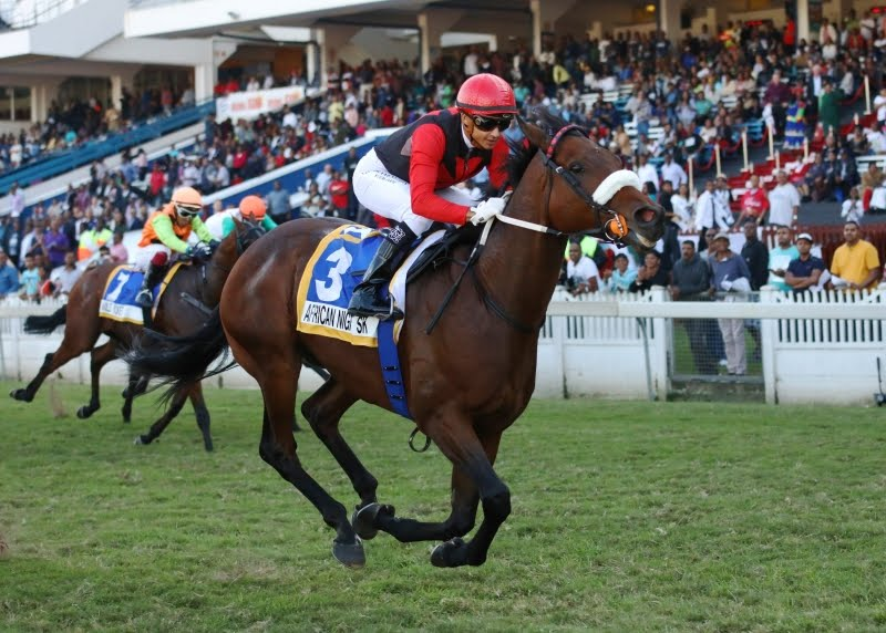African Night Sky - Horse Racing - Vodacom Durban July 2018