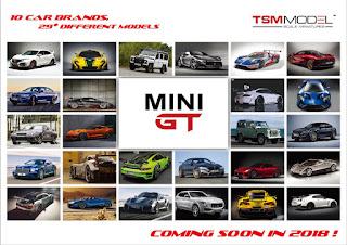 tsm mini gt 1/64