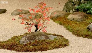 Adachi Museum of Art Garden Plants and Rocks
