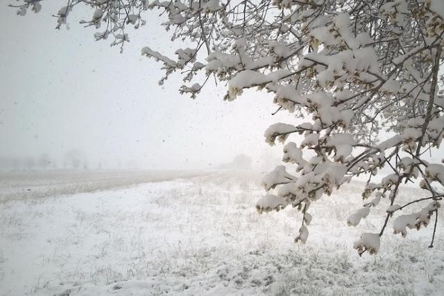 bambini scrivere testi sull'inverno