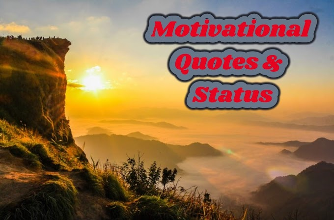 Best Motivational Quotes for Life, Success and Students   Motivational Status