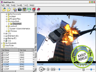 Download Flash Player Pro 5.88 Final Full Version