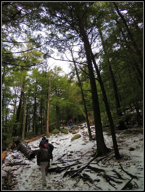 Hiking en el  Pawtuckaway State Park (NH)