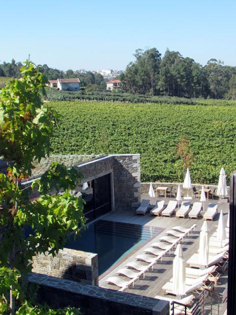 piscina por entre as vinhas