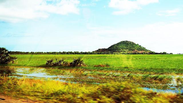 Изображение рисовых полей