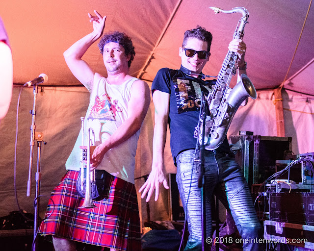 Five Alarm Funk at Hillside 2018 on July 14, 2018 Photo by John Ordean at One In Ten Words oneintenwords.com toronto indie alternative live music blog concert photography pictures photos