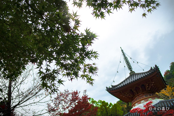 Pagode et érables, temple Mitaki-dera, Hiroshima