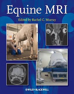 Equine MRI by Rachel Murray