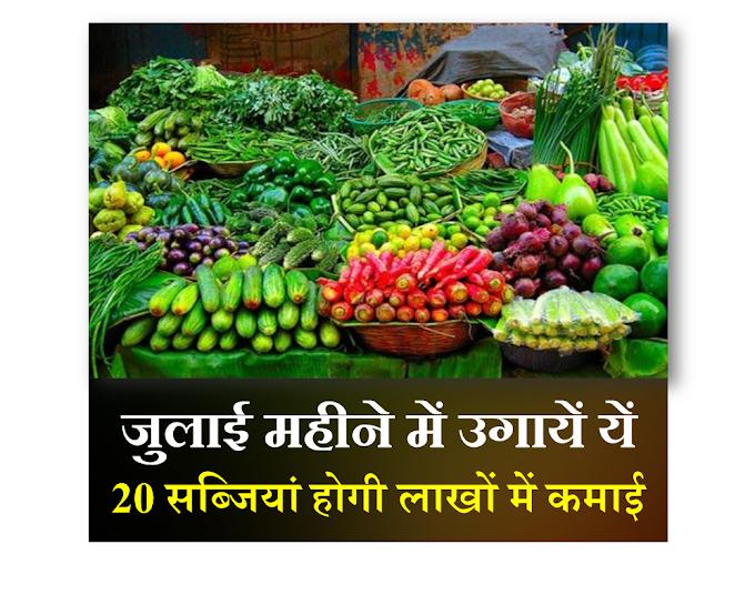 July vegetables-जुलाई महीने में लगाएं ये 20 सब्जियां होगी लाखों की कमाई-जुलाई वाली सब्जियाँ- SmartBusinessPlus