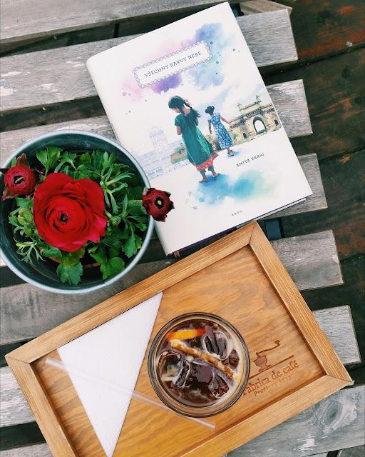 Review: Všechny barvy nebe (The Color of Our Sky) od Amita Trasi