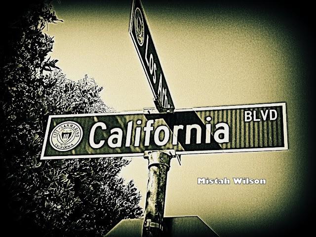 California Boulevard, San Marino, California by Mistah Wilson