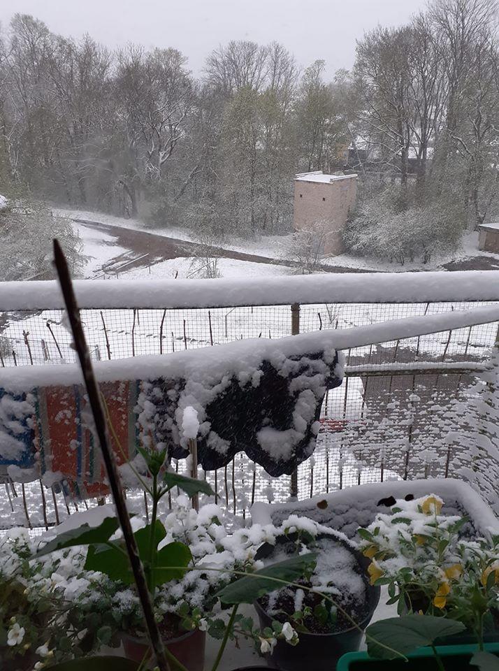 Sniegs maijā Madonā
