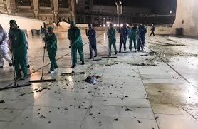 أعداد هائلة من الصراصير تغزو مكة المكرمة وساحات الحرم المكي في السعودية و اللسطات السعودية تسنفر