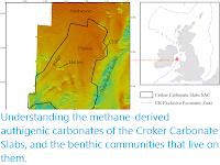 https://sciencythoughts.blogspot.com/2020/04/understanding-methane-derived.html