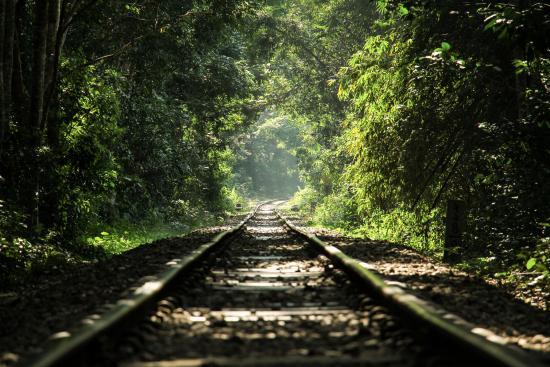 Sreemangal Travel Guide