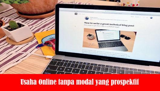 Usaha Online tanpa modal yang prospektif