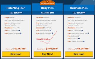 HostGator Baby Plan