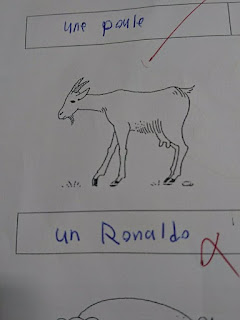 Funny: Student who called Cristiano Ronaldo G.O.A.T fails French exam
