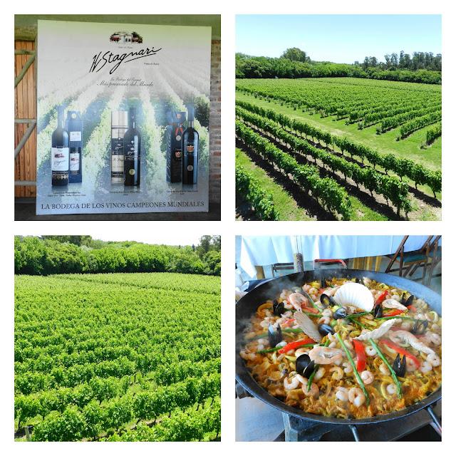 Visita a vinicola H. Stagnari - Montevideo, Uruguai