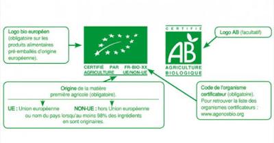 vin bio conventionnel difference degustation oenologie beaux-vins blog
